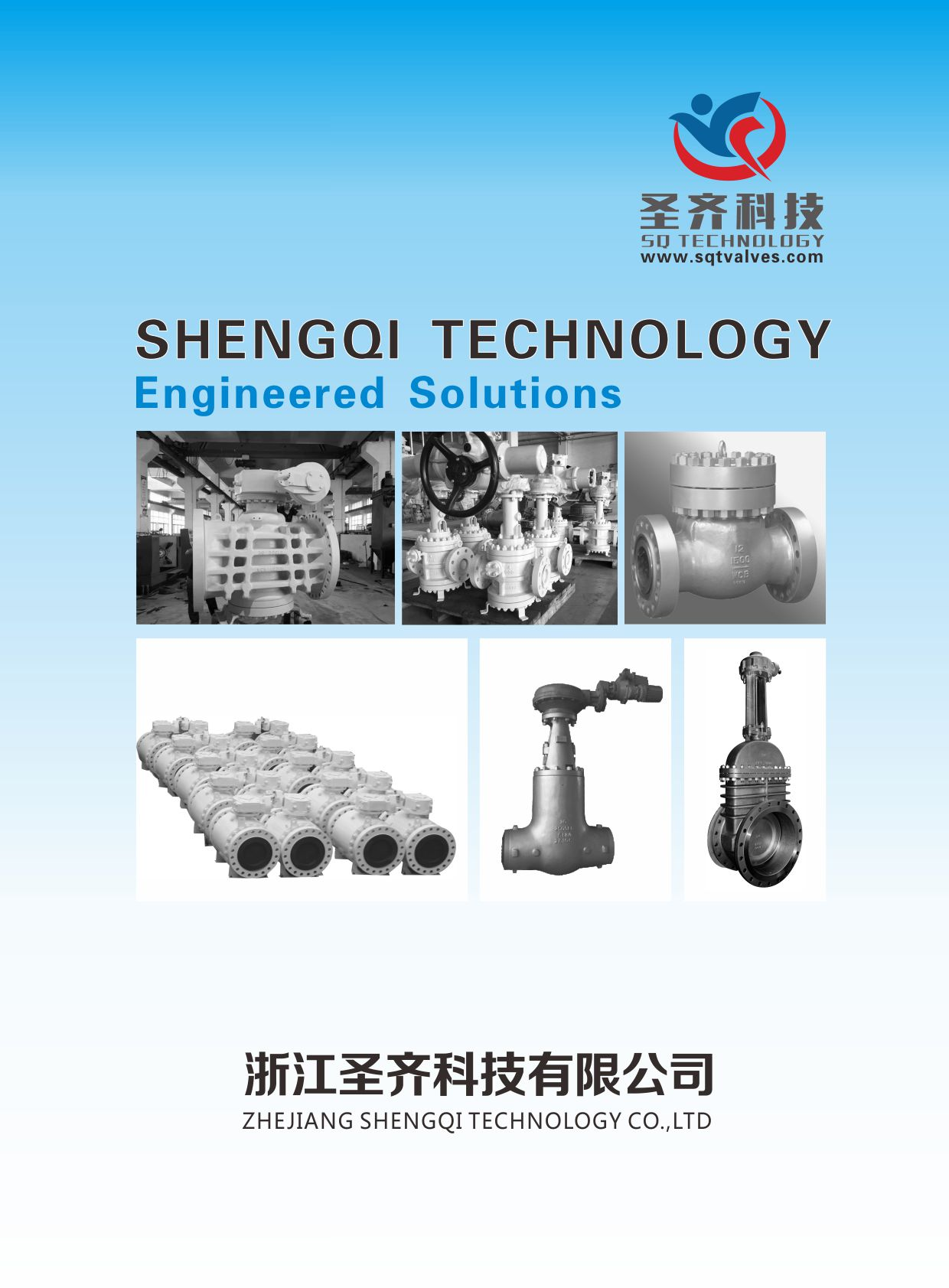 SHENGQI TECHNOLOGY(圣齐科技)E-BOOK